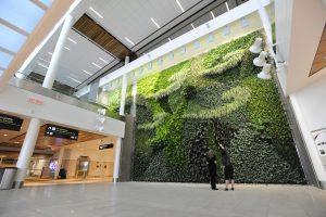 People admire the living wall at EIA
