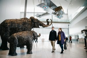 A couple looks at sculptures of mammoths at the Royal Alberta Museum.