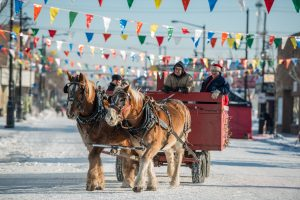 A man steers a horse and carriage at the Deep Freeze Festival in Edmonton.