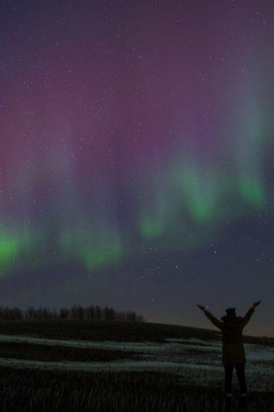 Stargazing   Explore Edmonton