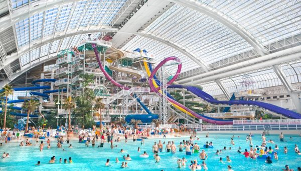 A large group of people playing at the World Water Park