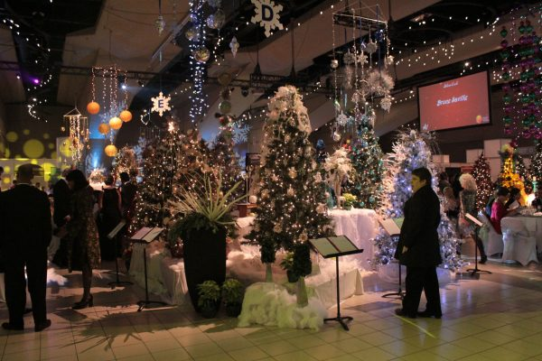 Dozens of decorated Christmas Trees at the Festival of Trees in Edmonton.